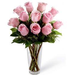 Pink pal Roses