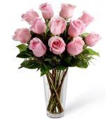Ρόζ παλ Τριαντάφυλλα
