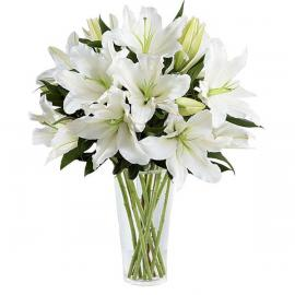 White Lilies (μόνο για Ελλάδα)
