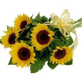 Sunflower bq