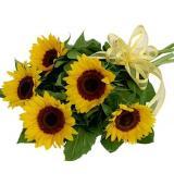 Sunflower bq   (μόνο για Ελλάδα)