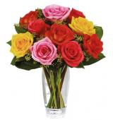 Multicolor roses   (μόνο για Ελλάδα)