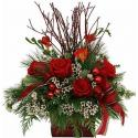 Christmas Eve Arrangement cosmoflora