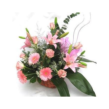Basket pink (BG)