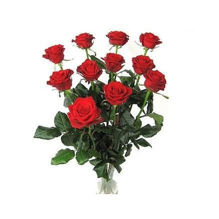 Roses (BG)