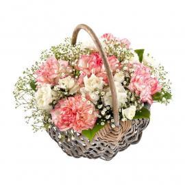 Blooming Sweetness (G)