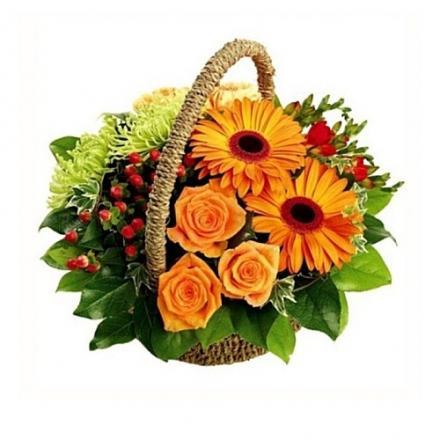 Forest's Basket