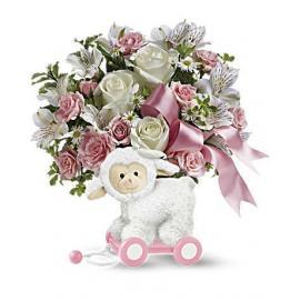 Sweet Little Lamb - Baby Pink (Αμερική)
