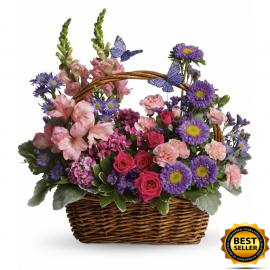 Country Basket Blooms (Αμερική-Καναδάς)