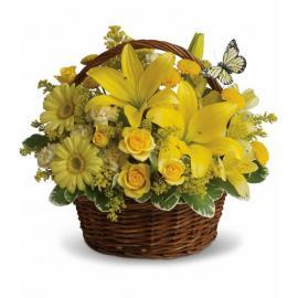 Basket Full of Wishes (Αμερική-Καναδάς)