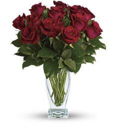 Rose Classique - Dozen Red Roses (Αμερική-Καναδάς)