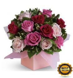 Χαριτωμένα Τριαντάφυλλα (AUS)