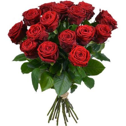 Red Roses Bouquet (SP)