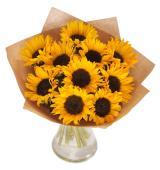 Sunflower fiesta     (μόνο για Ελλάδα)