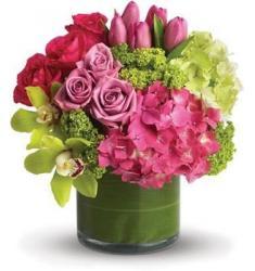 Floral Fantasy(AUS)