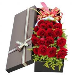 18 red roses (CHN)