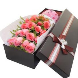 18 pink roses (CHN)