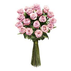 Pink long stem roses