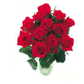 12 Κόκκινα Τριαντάφυλλα με βάζο