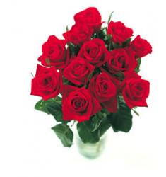 12 Red Roses Arranged - Container