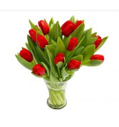 Ravishing Red Tulips (G)
