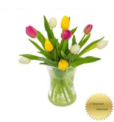 Mixed Tulip Bouquet (NL)