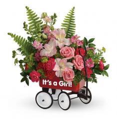 Σύνθεση  καλωσορίσματος για νεογέννητο κορίτσι (Αμερική)