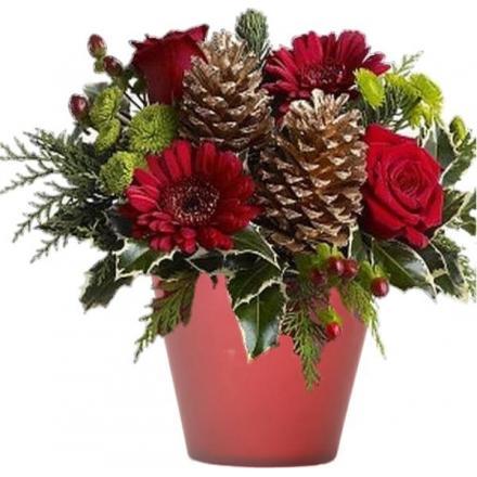 Christmas arrangement in a pot