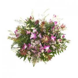 Bouquet of Dendrobium  (IT)