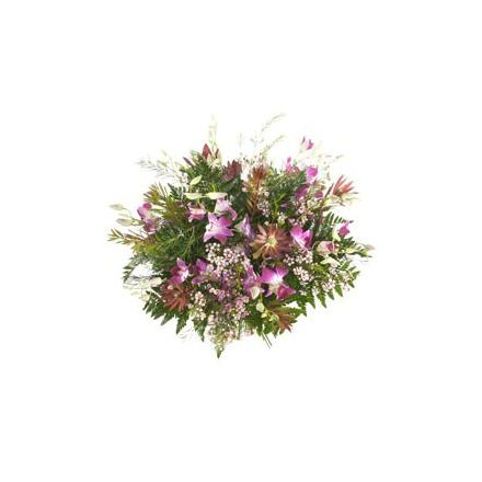 Bouquet of Dendrobium  (IT)