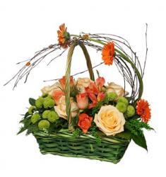Joyful basket (SR)