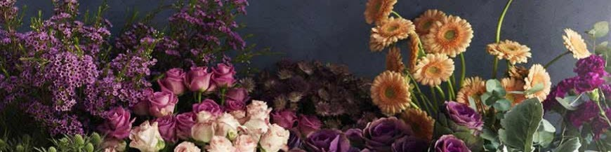 Ποιο είδος Λουλουδιού?