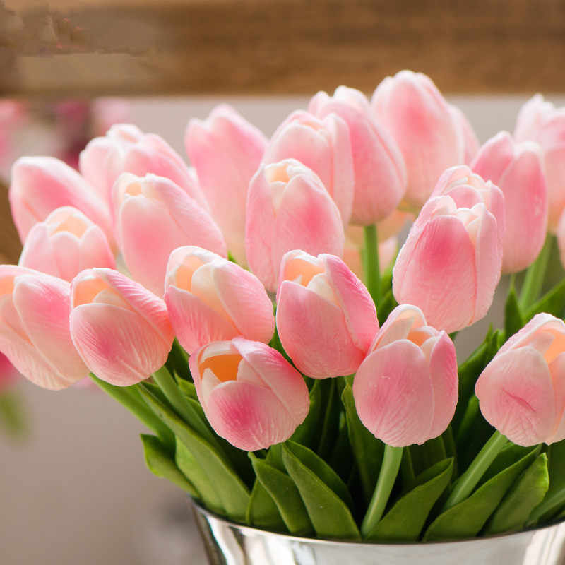 roz-toylipes-cosmoflora