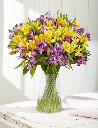 alstromeria_lila_yellow_cosmoflora
