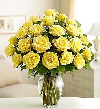 cosmoflora_yellow_roses